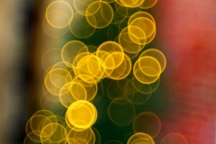 DSC09812-Weihnachtsbaum-Bubbles-Primotar-50mm-F3.5-